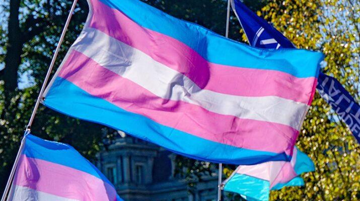 Bandera del orgullo trans. Los colores son azul, rosa, blanco, rosa y azul en franjas horizontales.