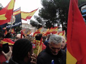 Imagen de banderas de España y una de la Policía Nacional elevadas por las personas en una manifestación de Vox.
